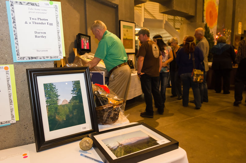 CGIC-2014-Silent-Auction-61